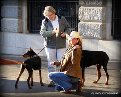 Picture of woman in cowboy hat with two dobermans in boston photo